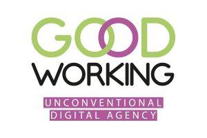 Good Working Web Agency Vasto